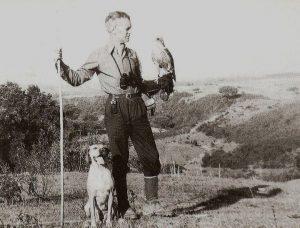 Nuno de Sepulveda Velloso, decano da falcoaria em Portugal