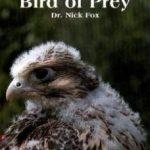 Livro Understanding the Bird of Prey