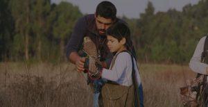 Falcoeiro jovem a ser ensinado pelo pai