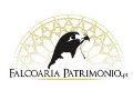 Logótipo Falcoariapatrimonio.pt