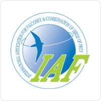 Logótipo International Association for Falconry