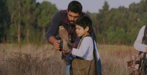Pai a ensinar falcoaria ao filho