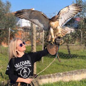 Silvia Leite - Crónica de uma falcoeira