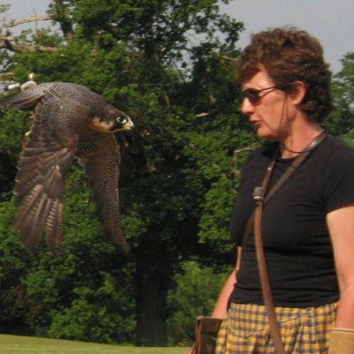 Jemina Parry Jones - Falcoeira e pioneira na Conservação