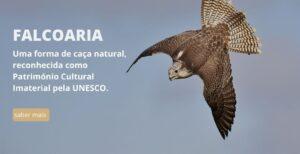 Associação Portuguesa de Falcoaria