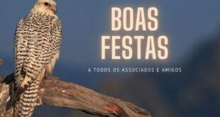 Boas festas da Associação Portuguesa de Falcoaria